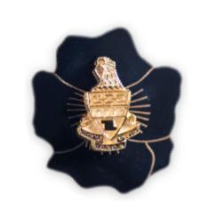Theta Alumnae Badge