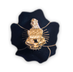Theta Alumnae Badge