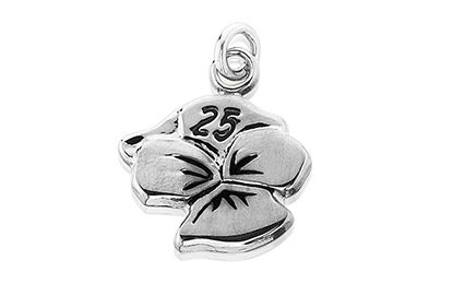 25 Year Charm Resized