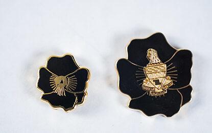 50- and 75-year pins