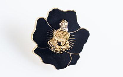 75 year pin 415x260